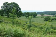 Farm Land, Shirlett, Shropshire