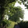 Lane past Tudhay