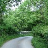 Virginstow: in the Carey valley