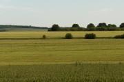 Farmland, Milston