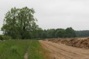looking towards Bunkers Plantation