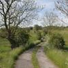 The lane to Broomyshaw