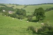 North Molton: near Lambscombe Cross