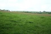 North Molton: towards Brinsworthy Cross