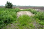 Farm bridge, Wood Fen