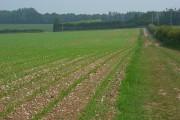 Farmland, the Leckford Estate