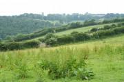 North Molton: by High Bullen Cross