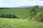 North Molton: near Radworthy Down
