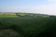 Farmland at Queena Lodge