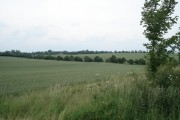 View over fields to Old Weston