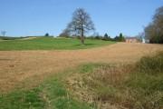 Farmland and Wicket  Nook