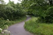 Lane near Rushybank
