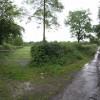 Lane near Foxhole