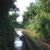 Track near Exbourne