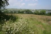 Farmland off Coombe Lane