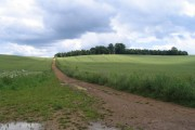 Wheat, track and folly