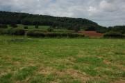 Farmland to the south of Canon Pyon church