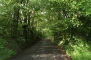 Lane near Langworthy