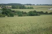 View to Mutfords Farm, Little Hormead