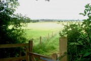 View from the edge of Chaddesley Wood