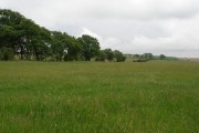 View of farmland to the side of Harehill Plantation