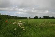 Farmland near Hoveton