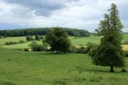 Farmland near Hardington