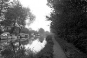Above New Haw Lock, River Wey Navigation