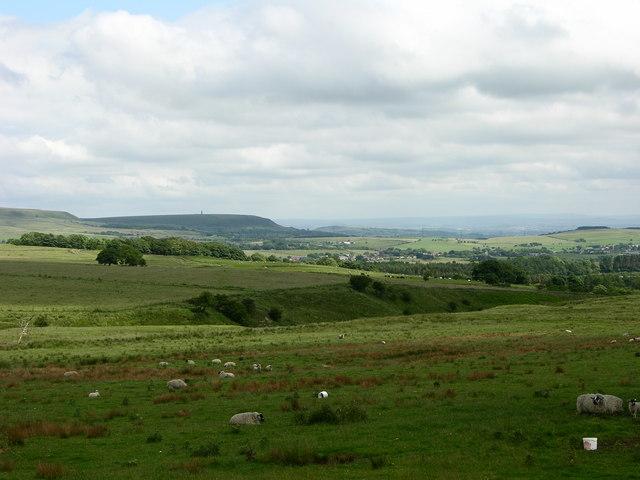 View towards Holcombe Hill