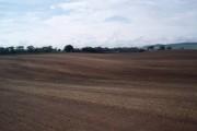 Farmland, Mains of Ravensby