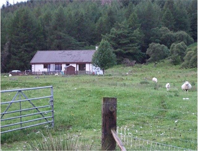 A woodside cottage