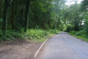 Road along side Ercall Wood