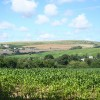 Tawstock: above Pludmoor