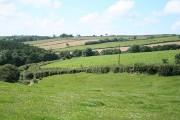 Tawstock: by Merrydale Cross