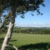 Tawstock: near Hollick