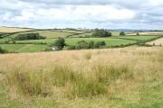 High Bickington: towards Langridge