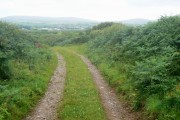 Farm track by Chapel Mere