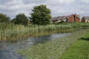 Leeds-Liverpool Canal at Waddicar