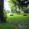 Churchyard at Aston Ingham