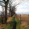 Footpath to Elsecar.
