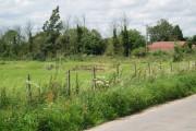 Field Farm  on Haxey Carr