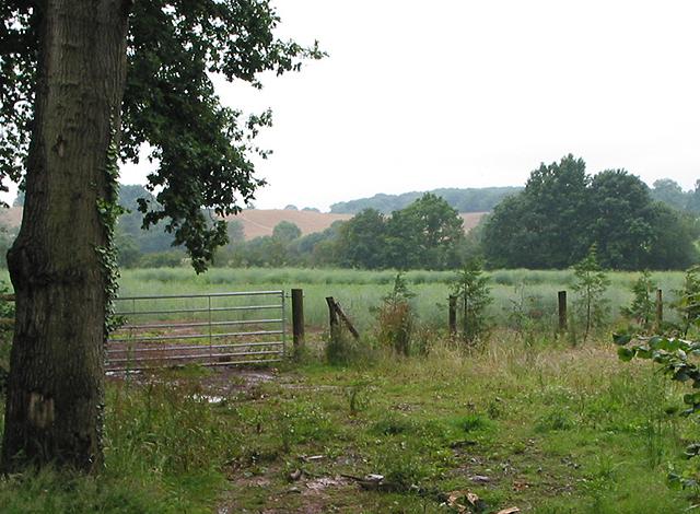 Farmland near Aston Ingham