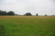 Farmland off Langham Lane