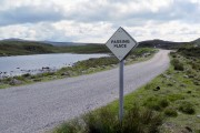 Passing place by small loch