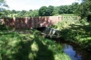 Dappled Bridge