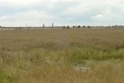 view from Hunter Flat Lane