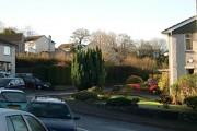 Suburban Houses and Gardens
