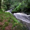 Afon Giedd gorge