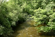River Dovey at Ty-gwyn