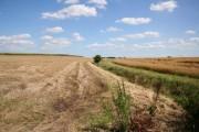 Harrington Farmland